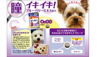 「愛犬用ぱっちり」無料