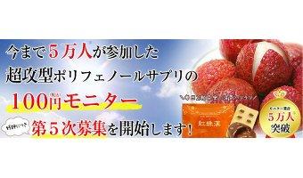 紅珠漢の100円モニター
